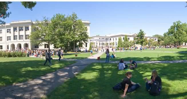 Top-10-Universities-in-Dubai-2