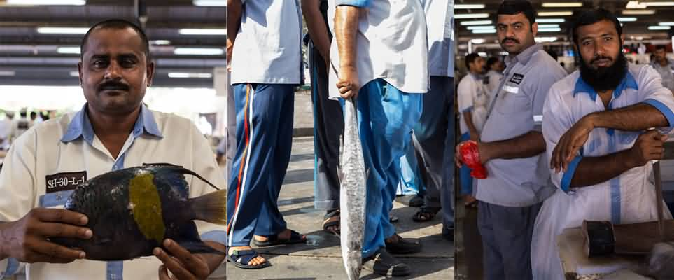 بالصور | الروعة والجمال في سوق السمك ديرة بدبي