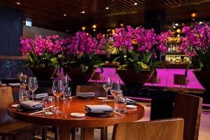 مطعم نوفيكوف للمأكولات الآسيوية في دبي